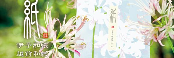 midori – 伊予和紙 越前和紙